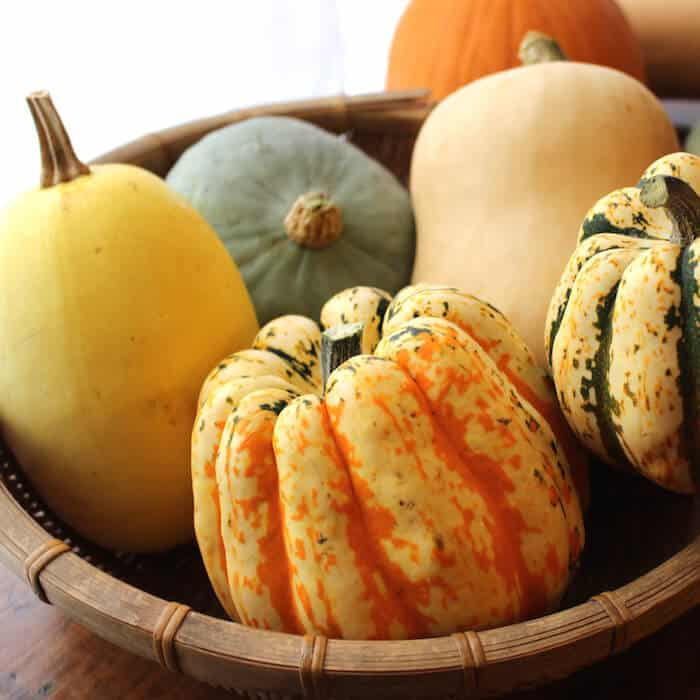 Basket of squash. The yellow squash on the left is a spaghetti squash. Others pictured: sweet dumpling squash, butternut squash (lighter yellow one in the back), hubbard squash (green one).