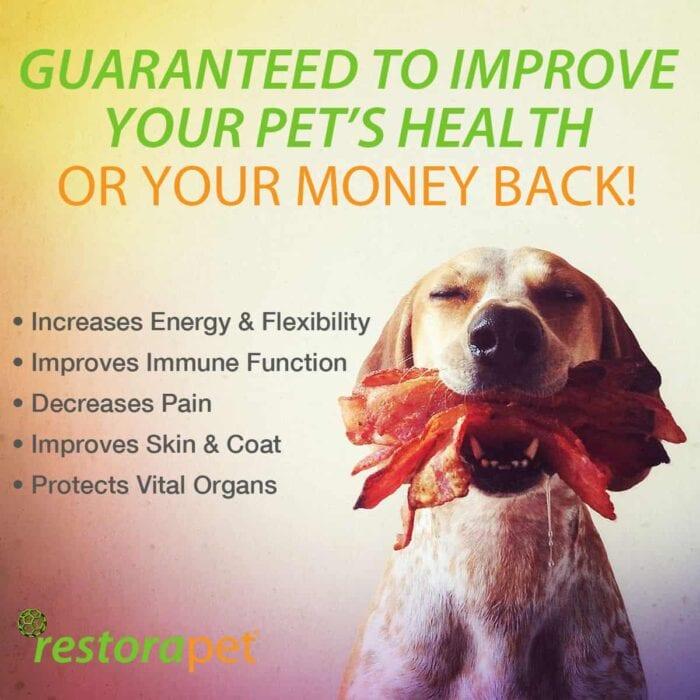 restorapet money back guarantee