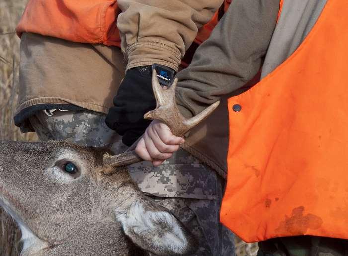 2 men dragging a deer by the antlers