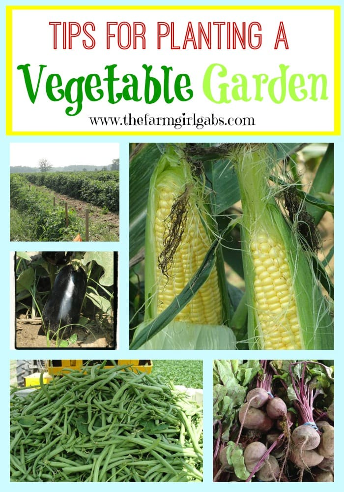 Tips for Planting a Vegetable Garden from How Does Your Garden Grow? ~ www.thefarmgirlgabs.com