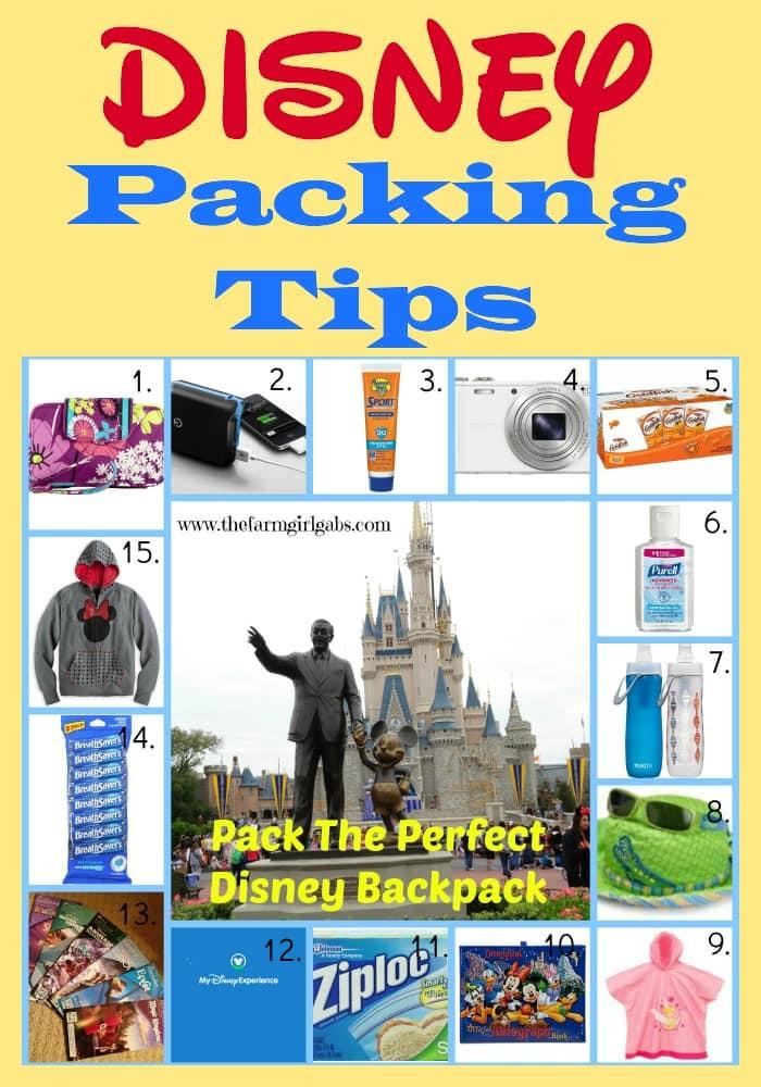 Disney Packing Tips-Pinterest