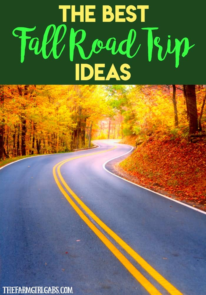 Planning to hit the road this fall and do some sightseeing? Check out these Best Fall Road Trip Ideas for inspiration.