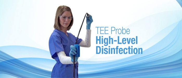 TEE Probe high level disinfection