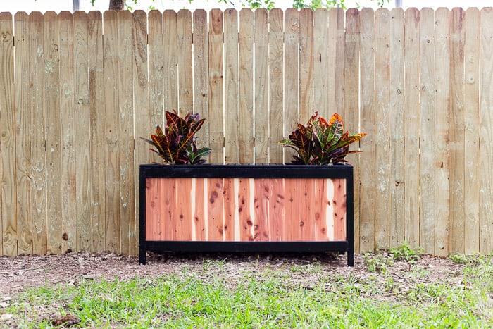 diy cedar bench with planter