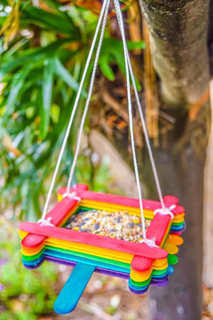 Rainbow Birdfeeder