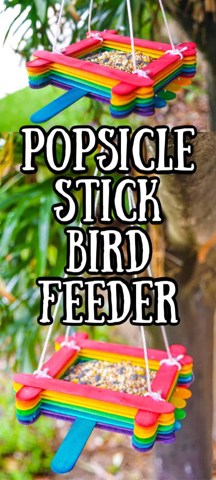 Popsicle Stick Craft Bird Feeder