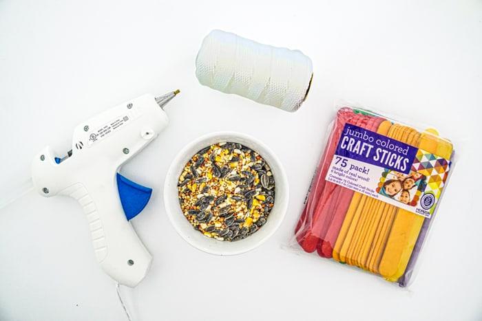 Supplies to Make a Birdfeeder