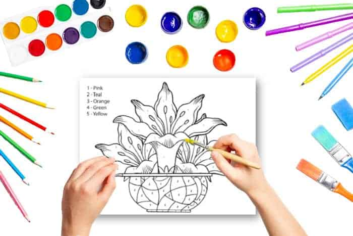 Kids Printable Color by Number