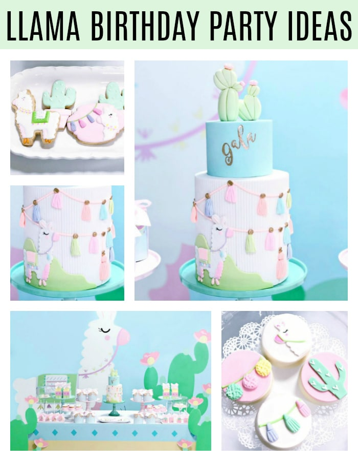 Llama Birthday Party Ideas on Pretty My Party