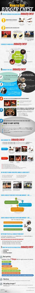 Bigger Chest Infographic