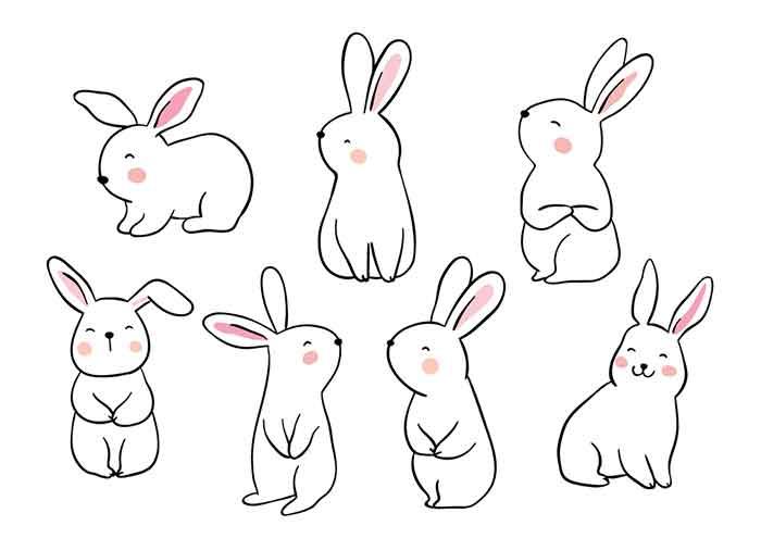 Drawings of a set of Cute Rabbits