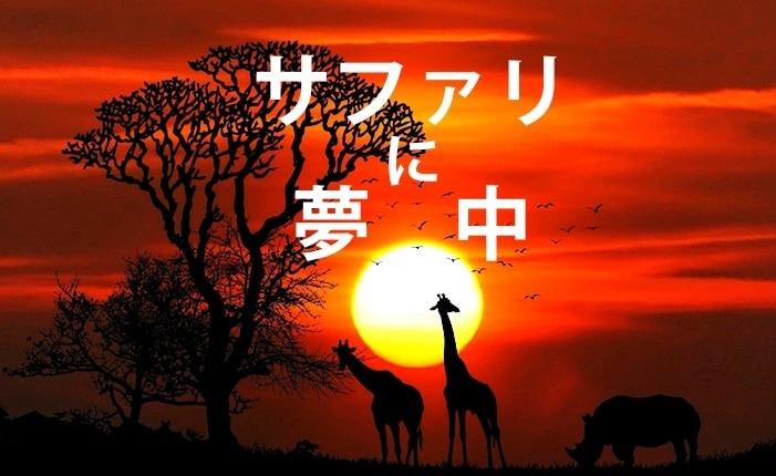 アフリカ・サファリでの夕焼け
