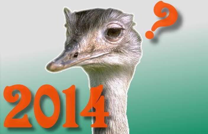 Neugierig auf 2014
