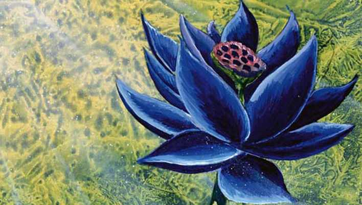 MTG Reserved List Black Lotus Banner