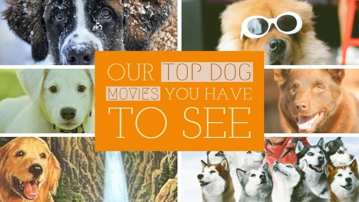 Top dog movies to see in 2019