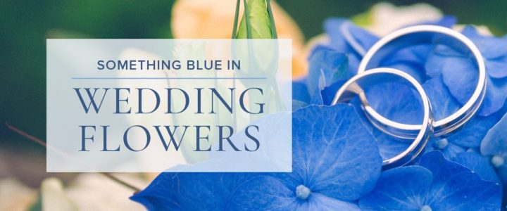 ElegantSomethingBlue-BeautifulBlue-blog
