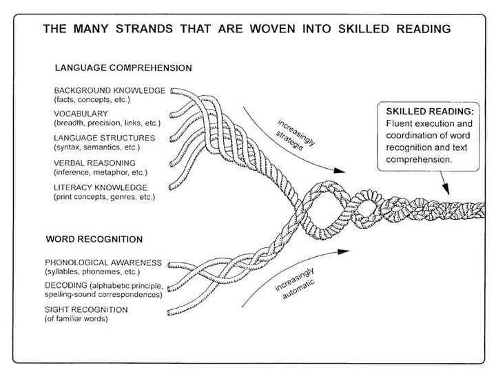 Scarborough's Reading Rope and the science of reading