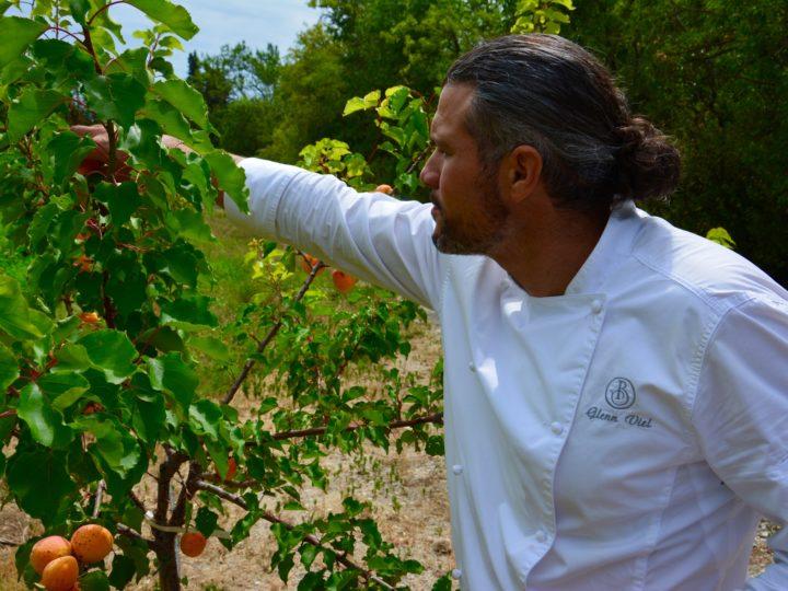 Balade végétale dans les cuisines et les jardins de Baumanière
