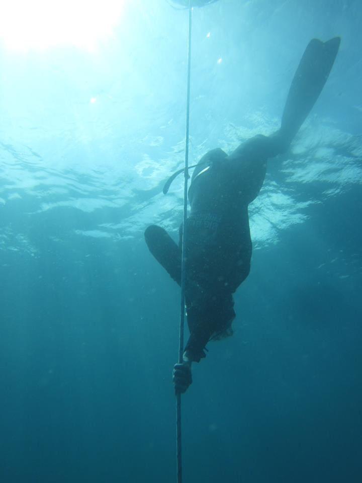 เรียน freediving
