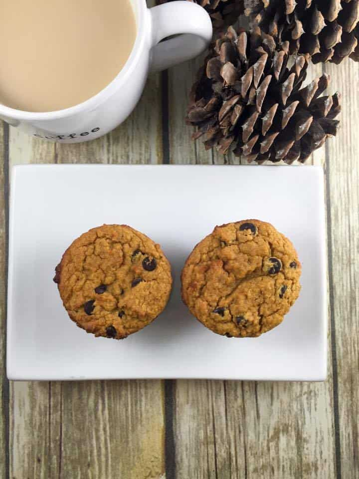 Pumpkin Chocolate Chip Muffins {THM-S, Low Carb, Sugar Free}