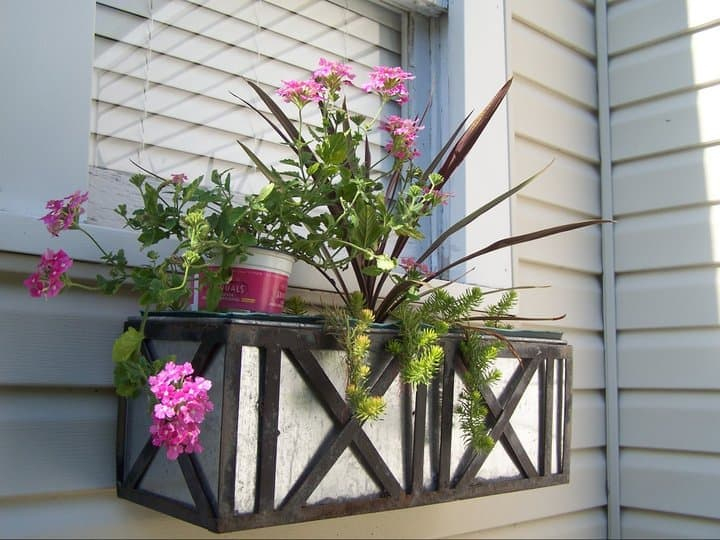 Gardening, Window Boxes