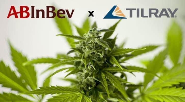 AB InBev investira preko 50 miliona dolara u Cannabis Company
