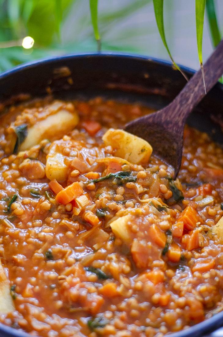 Estofado de lentejas al curry, una receta vegetariana fácil, rápida.