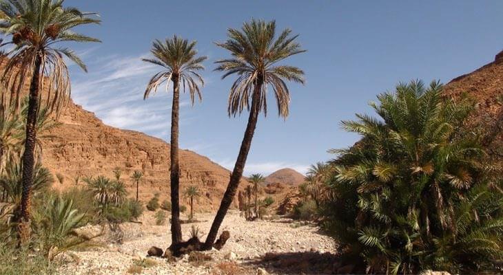 Marokko-reisverhaal-Zuid-Marokko