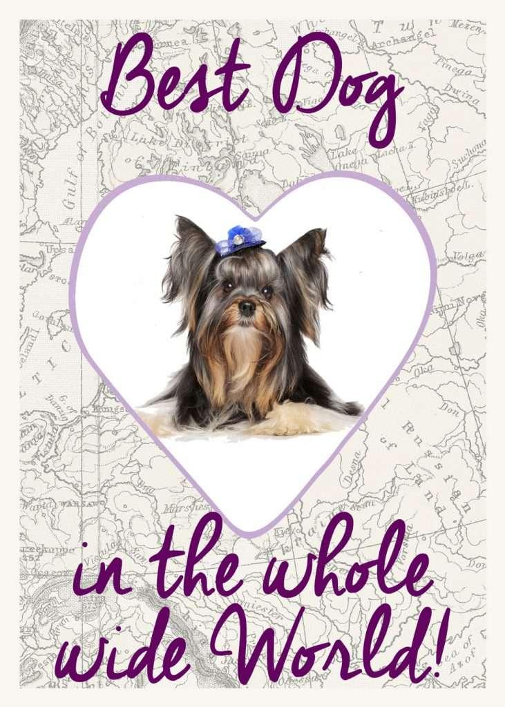 best dog in the worldl valentines card