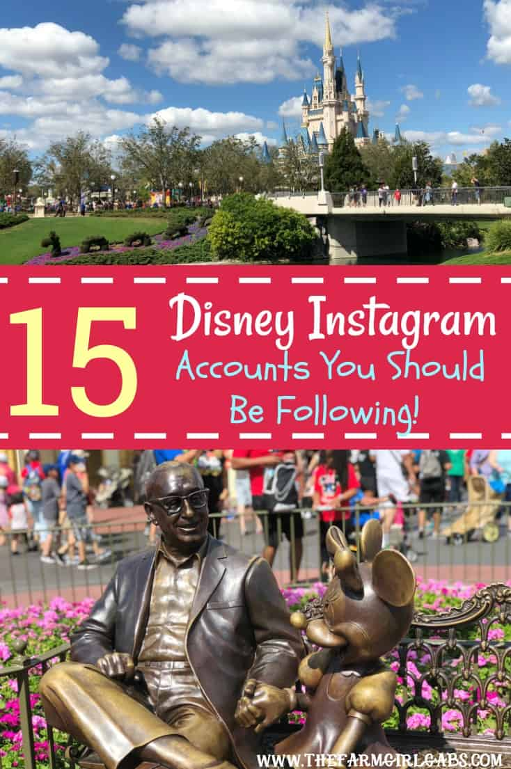 Can't get enough of the Disney Parks? Here are Instagram Disney Accounts You Should Be Following to make your day magical. #WaltDisneyWorld #Disney #DisneyParks #DisneySide #Instagram #DisneyTravel #DisneySMMC #Disneyland