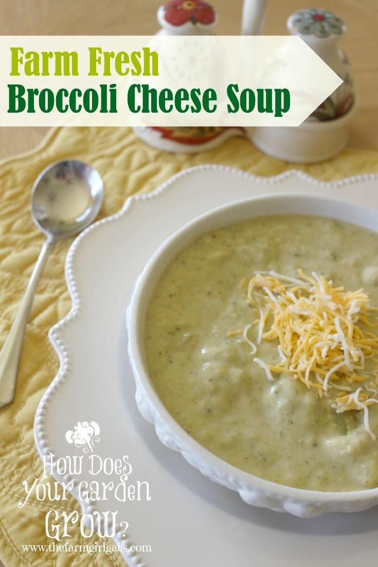 Farm Fresh Broccoli Cheese Soup from www.thefarmgirlgabs.com