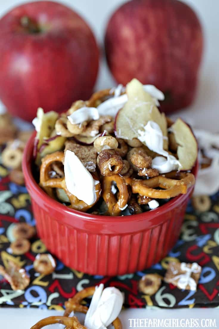 Celebrate the flavors of fall with this yummy Honey Nut Cheerios™ Apple Pie Snack Mix. It's the perfect snack for your kids' school lunch. #Ad #Costco