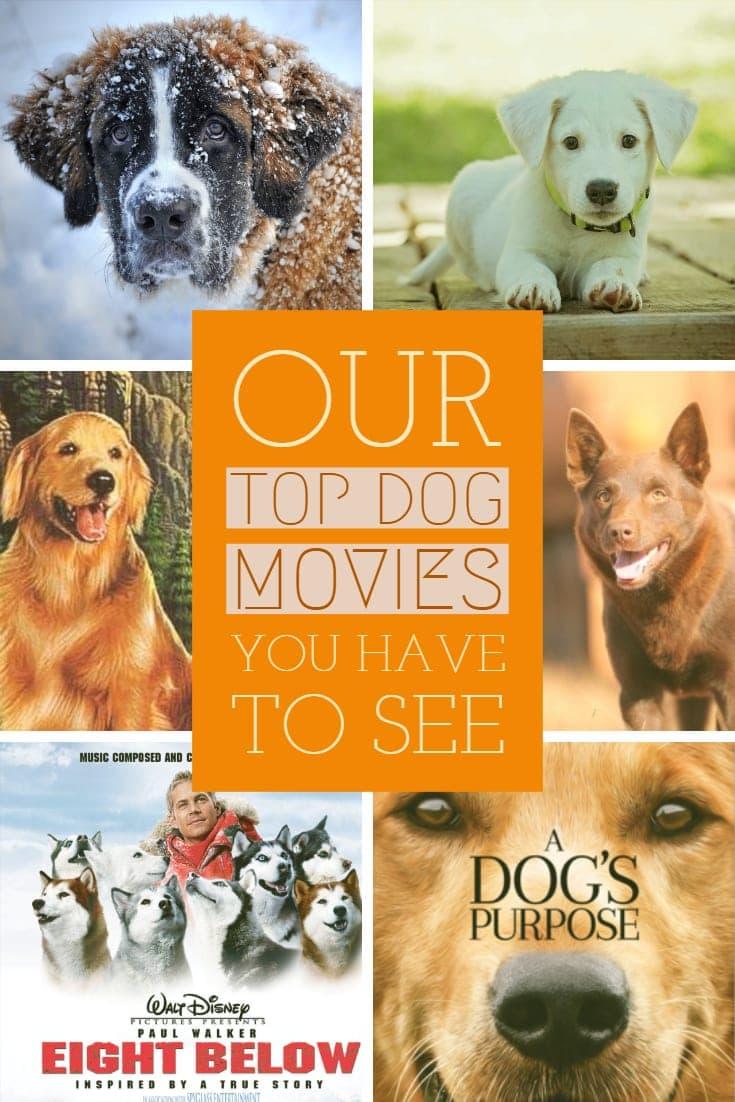 Top Dog Movies #dog #dogmovie