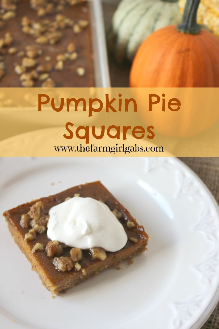 Pumpkin Pie Squares from How Does Your Garden Grow? {www.thefarmgirlgabs.com}
