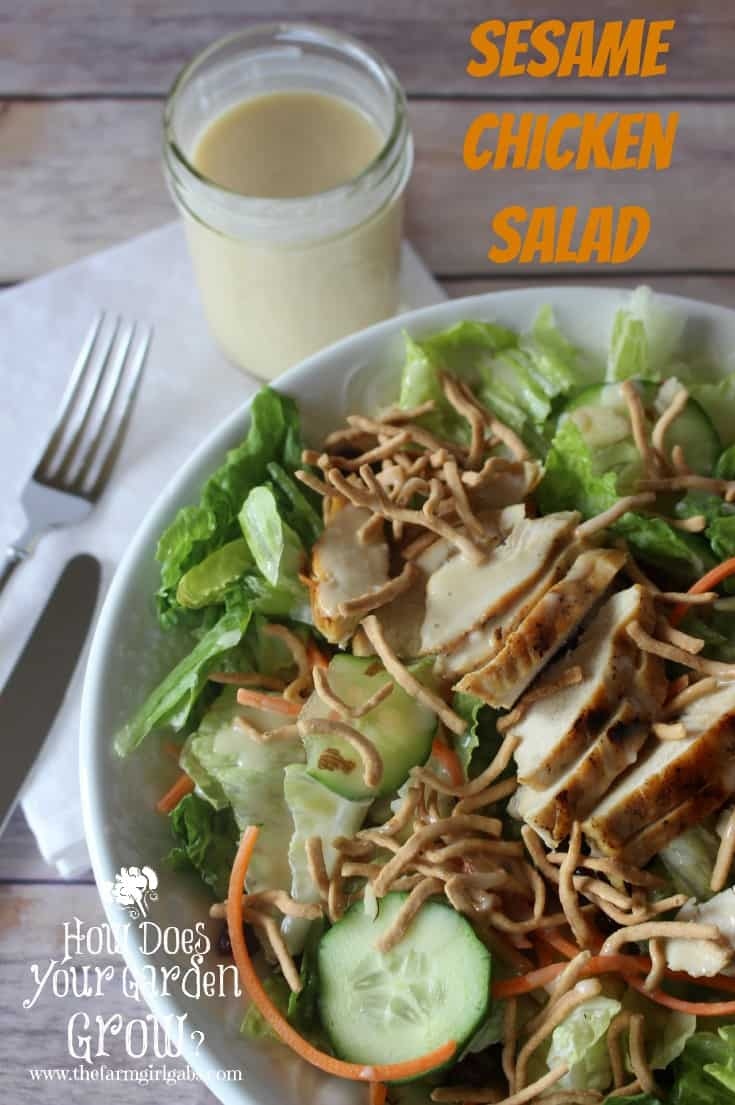 This Sesame Chicken Salad is a perfect lunch or dinner option. Served with Honey Sesame Dressing on a bed of greens it is a quick and easy recipe.