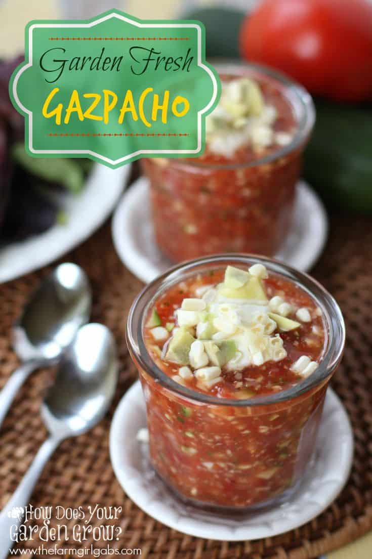 Garden Fresh Gazpacho is a delicious summer soup made with fresh garden vegetables. This recipe is super easy and a great way to use up all the vegetables from the farmer's market or your garden.