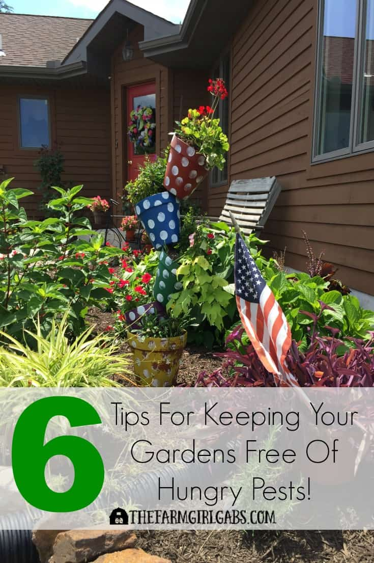 Spending a lot of time in your garden lately? Follow these Six Tips For Keeping Your Gardens Free Of Hungry Pests. #ad