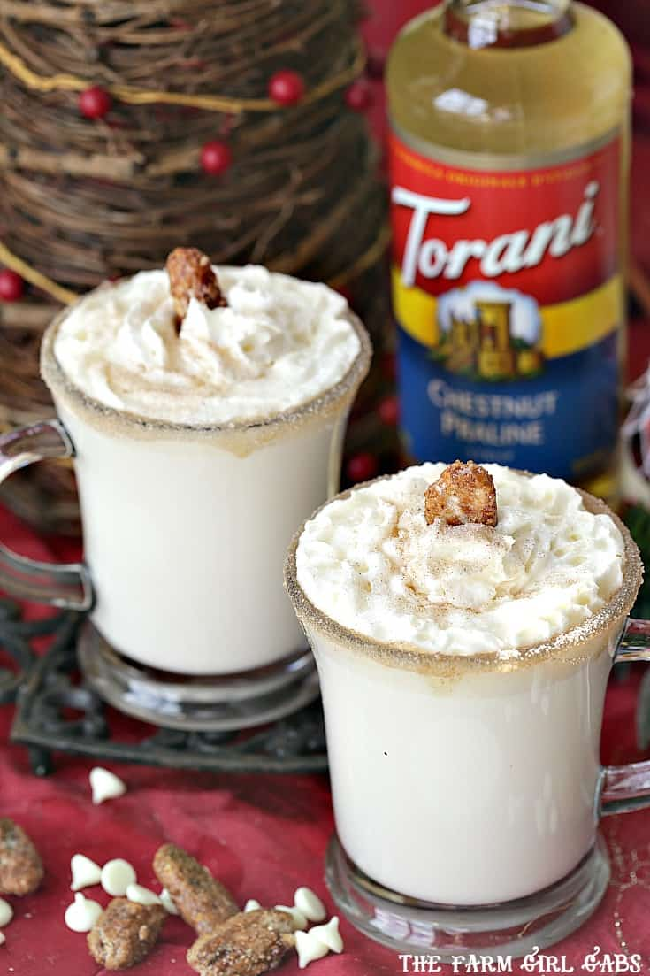 Warm up with a mug of Chestnut Praline White Hot Chocolate. Save money by making your own drink recipes at home using Torani Syrups!