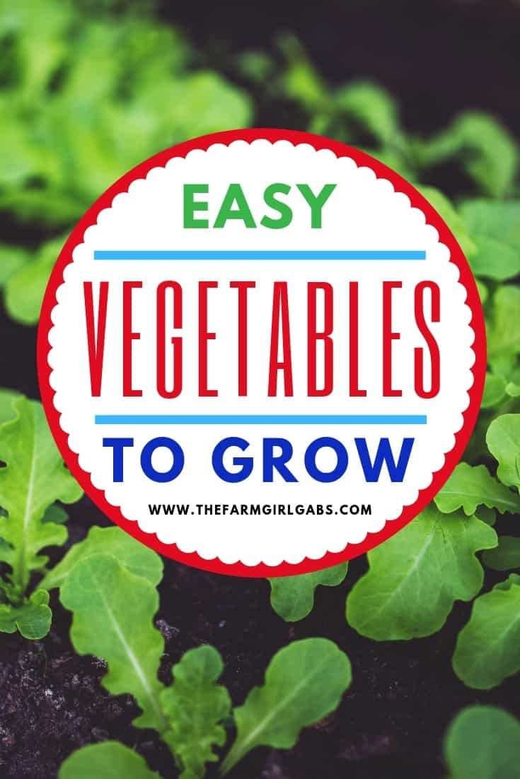 Ready to dig in and start planting your garden? I have some helpful gardening tips. Here is a list of Easy Vegetables To Grow In Your Garden. #gardening #gardeningtips #vegetablegarden #gardeningideas