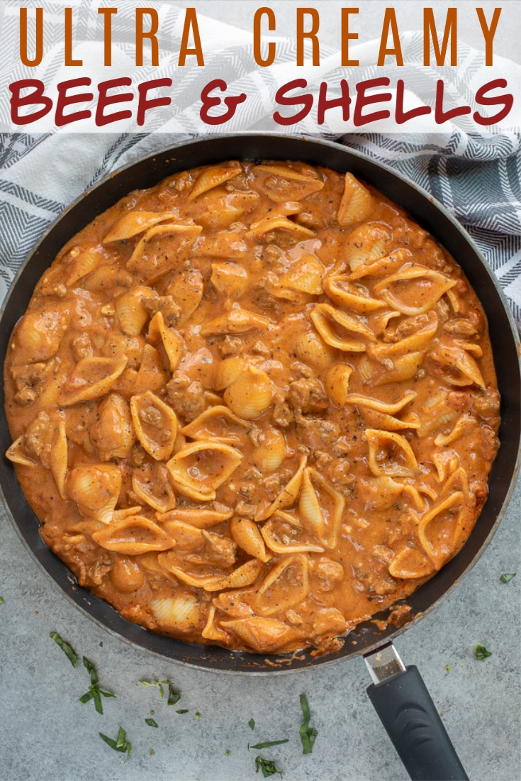 Bowl filled with creamy pasta with beef.