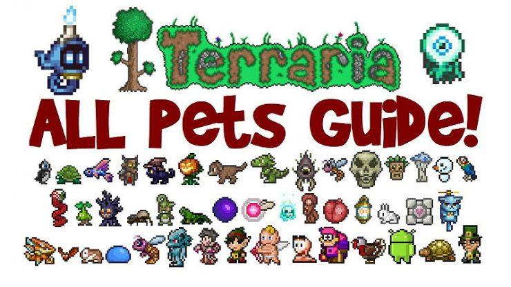 Terraria Pets