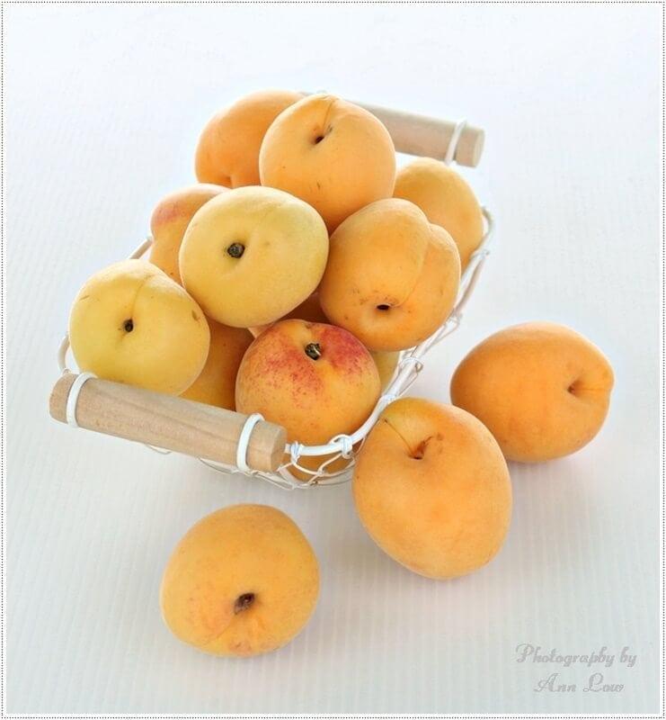 gluten-free-apricot-pies-026