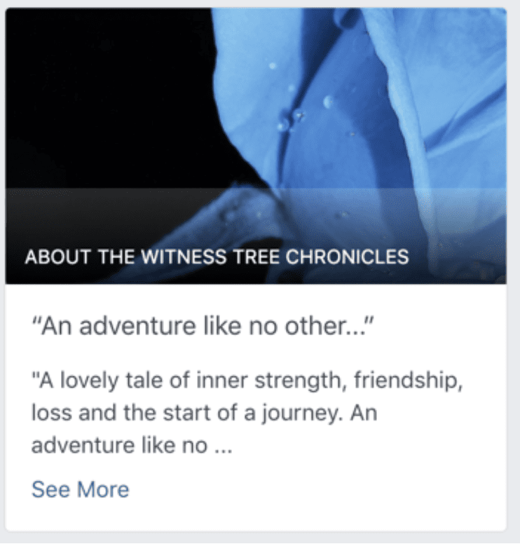 Facebook Our Story section