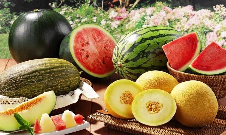 anguria e melone