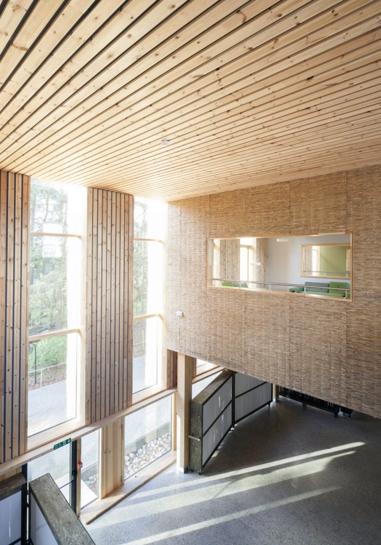 view from a building mezzanine showcasing wooden slat ceilings, triple-height windows letting in lots of light and a meeting room clad in cork across the atrium