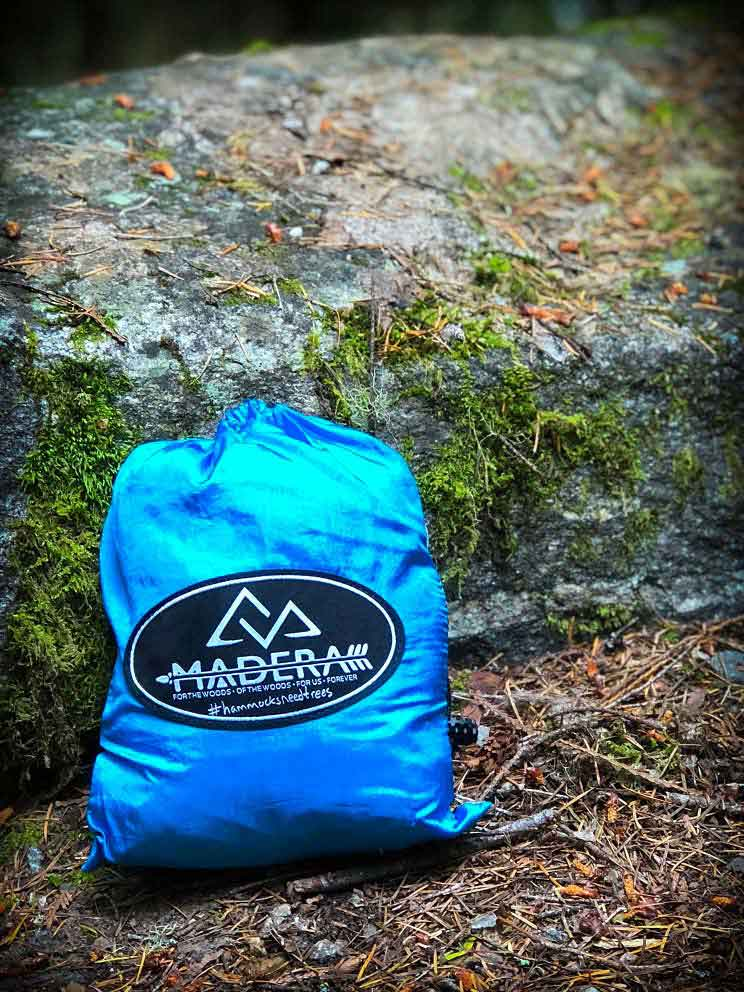 Plant trees with Madera Hammocks