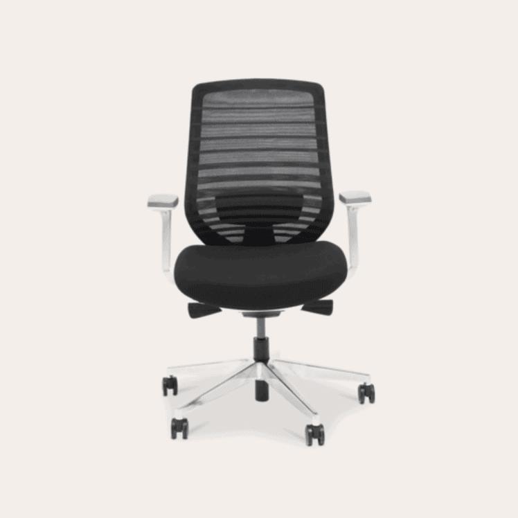Branch Chair - Best Ergonomic Chair for 2021