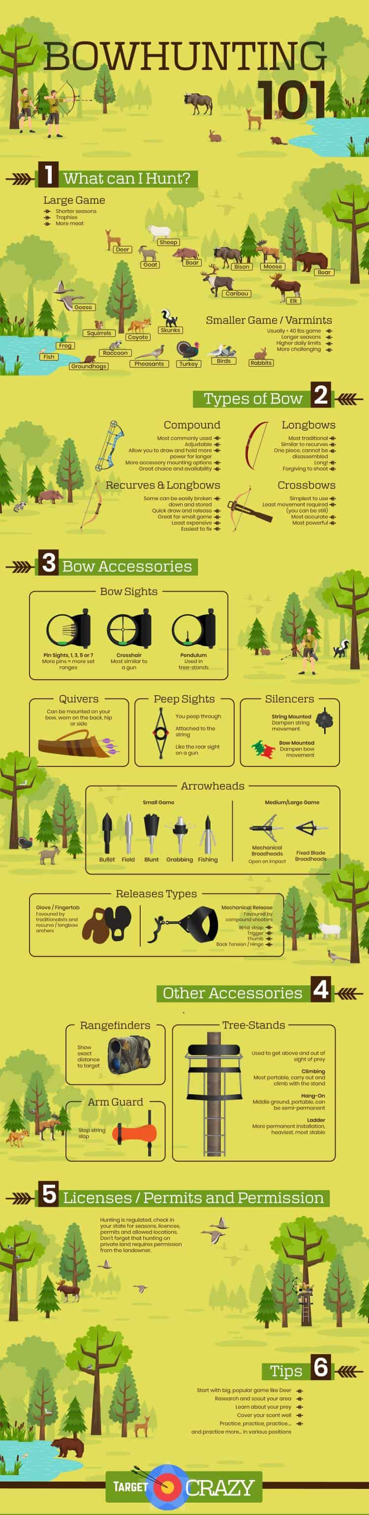 Bowhunting 101 infographic, a pictorial description of things you can hunt, types of bows, bow accessories, arrowheads, hunting accessories and tips and tricks all beginner bowhunters should know.