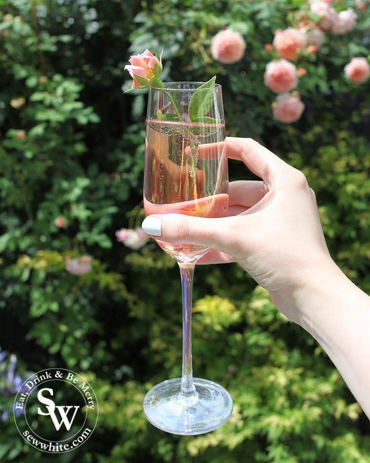 cheers to a great romantic rose bubbly champagne drink.