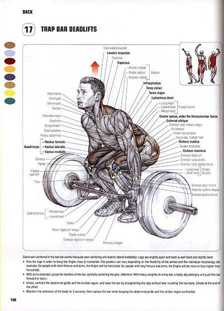Hex Bar Deadlift Benefits Many Muscle Groups - Image Credit Powerlifting Motivation
